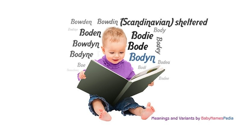 Meaning of the name Bodyn
