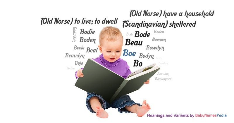 Meaning of the name Boe