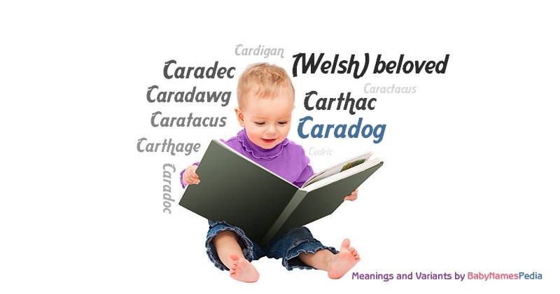 Meaning of the name Caradog