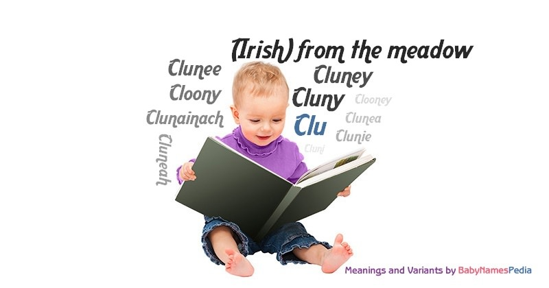 Meaning of the name Clu