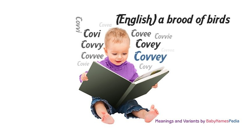 Meaning of the name Covvey