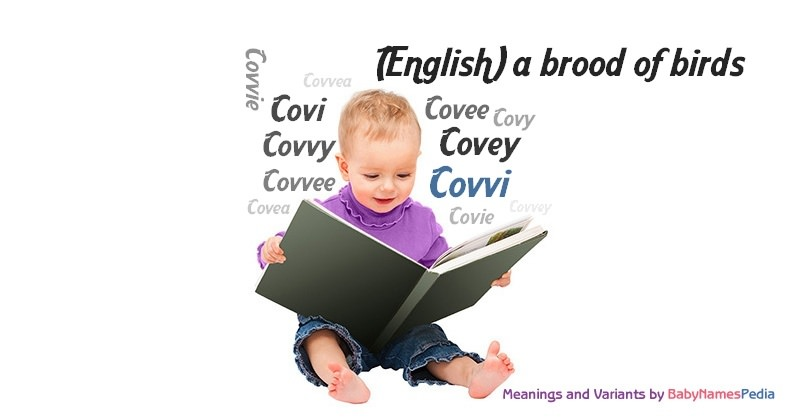 Meaning of the name Covvi
