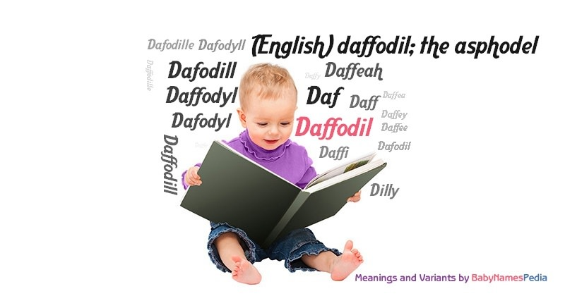 Daffodil Meaning Of Daffodil What Does Daffodil Mean