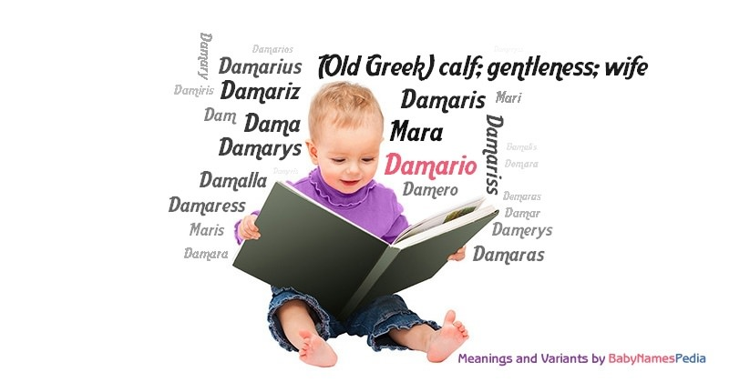 Damario - Meaning of Damario, What does Damario mean? girl ...