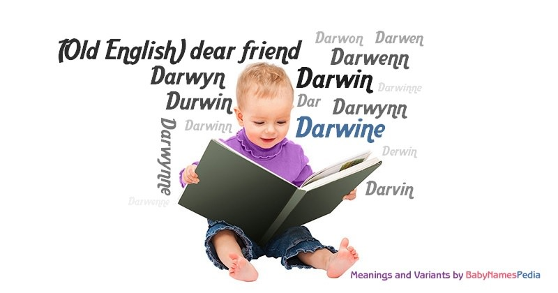 Meaning of the name Darwine
