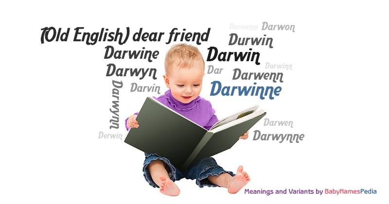 Meaning of the name Darwinne