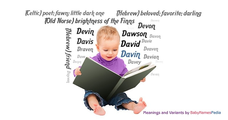 Meaning of the name Davin