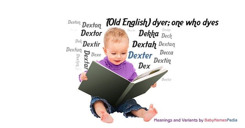 Dexter meaning of dexter what does dexter mean for Meaning of terrace in english