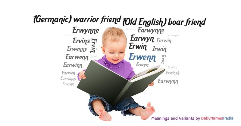 Meaning of the name Erwenn