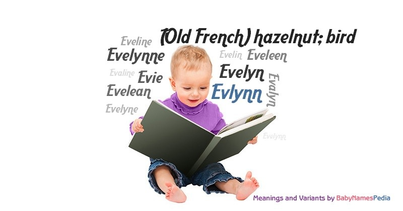 Meaning of the name Evlynn