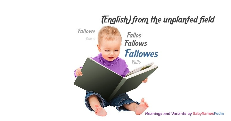 Fallowes - Meaning of Fallowes, What does Fallowes mean?