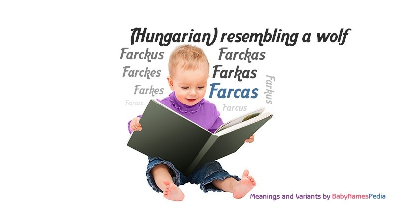 Meaning of the name Farcas