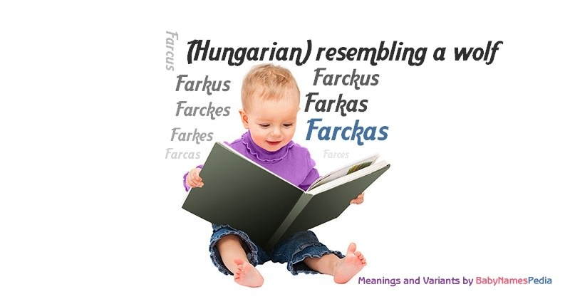 Meaning of the name Farckas