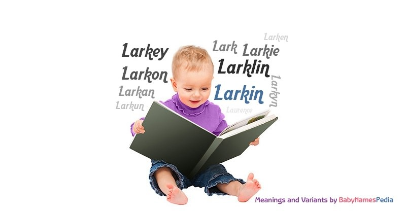 Meaning of the name Larkin