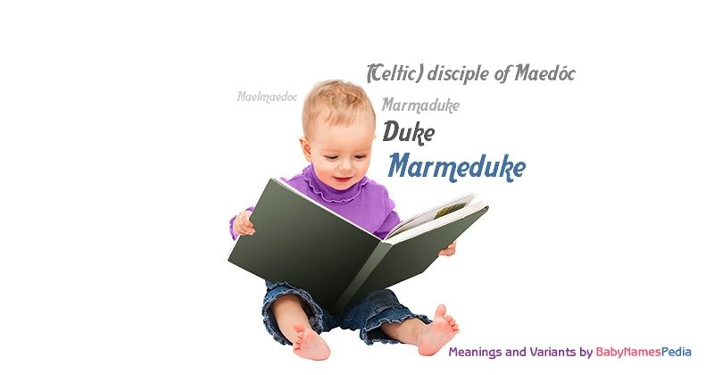 Meaning of the name Marmeduke