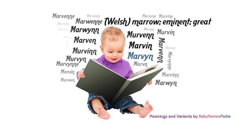 Meaning of the name Marvyn