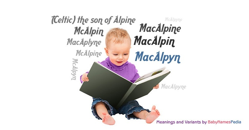 Meaning of the name MacAlpyn
