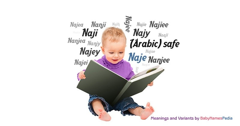 Meaning of the name Naje