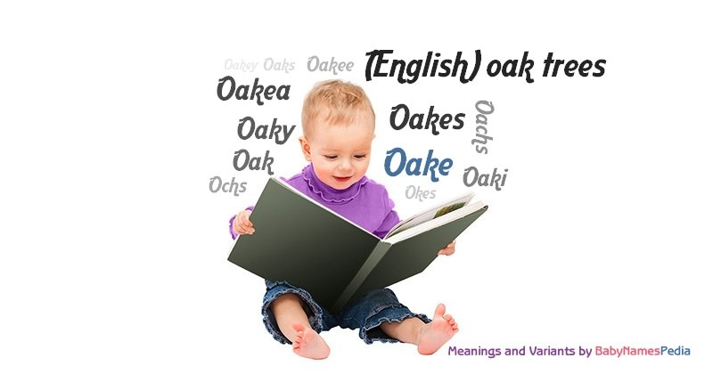 Meaning of the name Oake