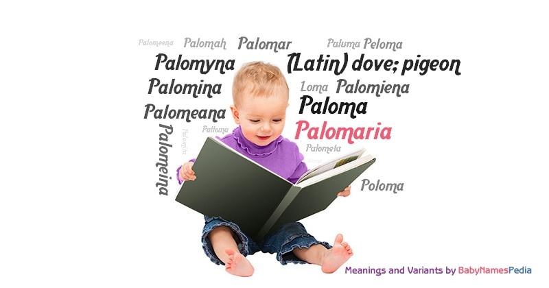 Meaning of the name Palomaria