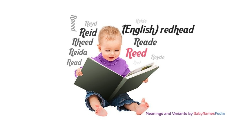 reid name. meaning of the name reed reid r
