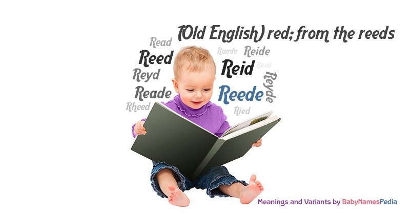 Meaning of the name Reede