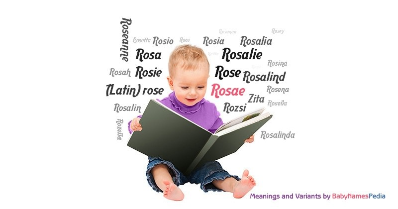 Meaning of the name Rosae