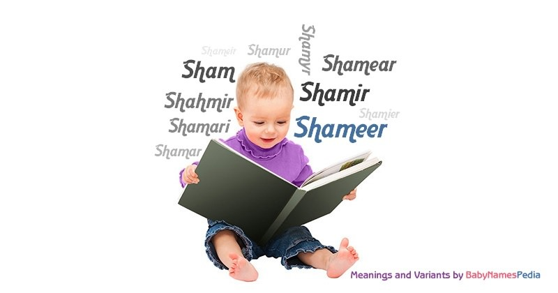 Meaning of the name Shameer