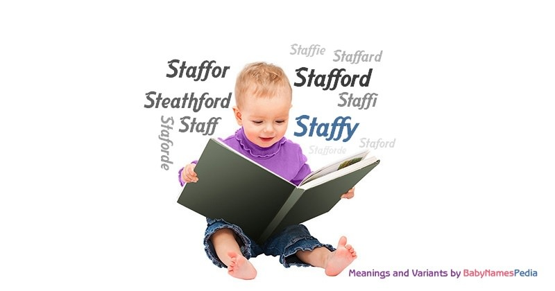 Meaning of the name Staffy