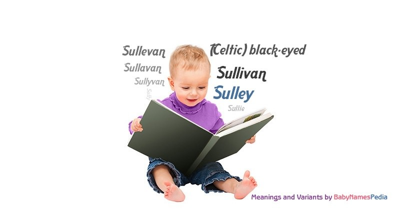 Meaning of the name Sulley