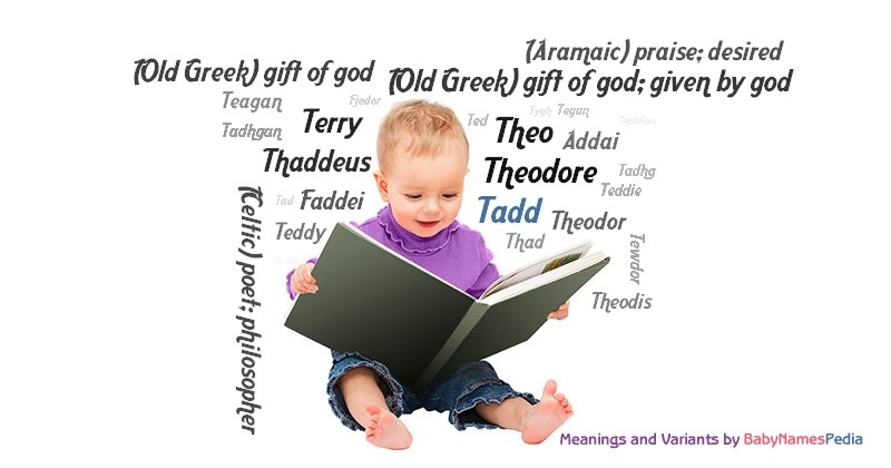 Meaning of the name Tadd