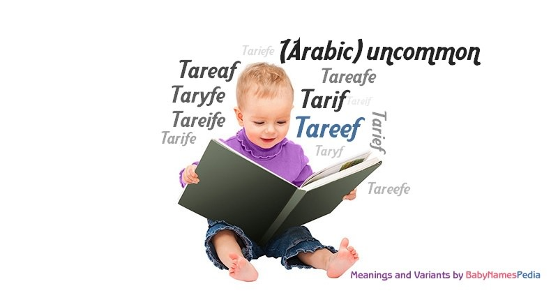 Meaning of the name Tareef