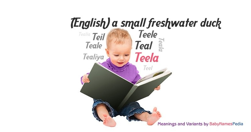 Meaning of the name Teela