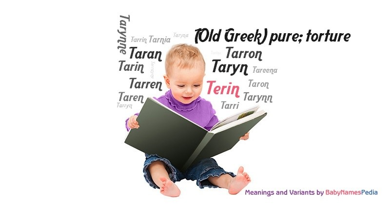 Terin meaning of terin what does terin mean for Meaning of terrace in english
