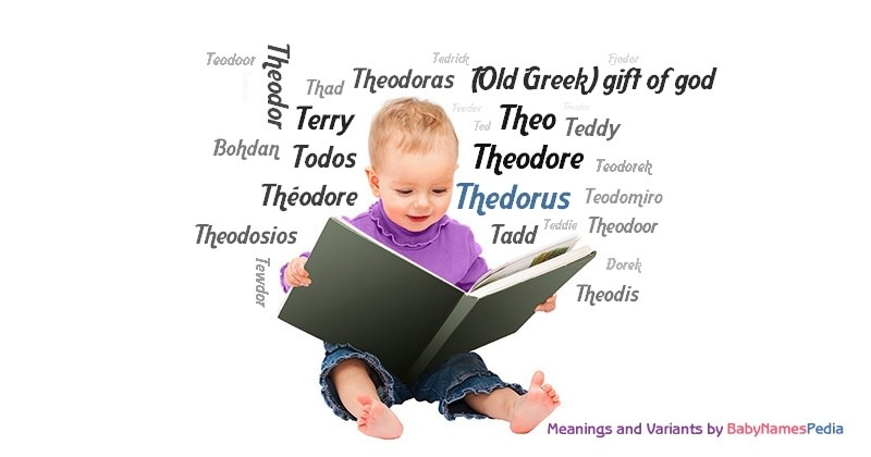 Meaning of the name Thedorus