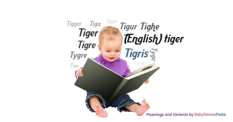 Meaning of the name Tigris