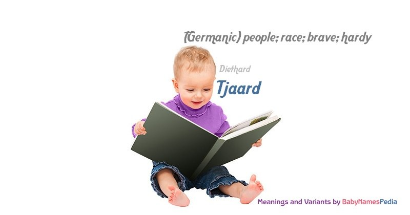Meaning of the name Tjaard