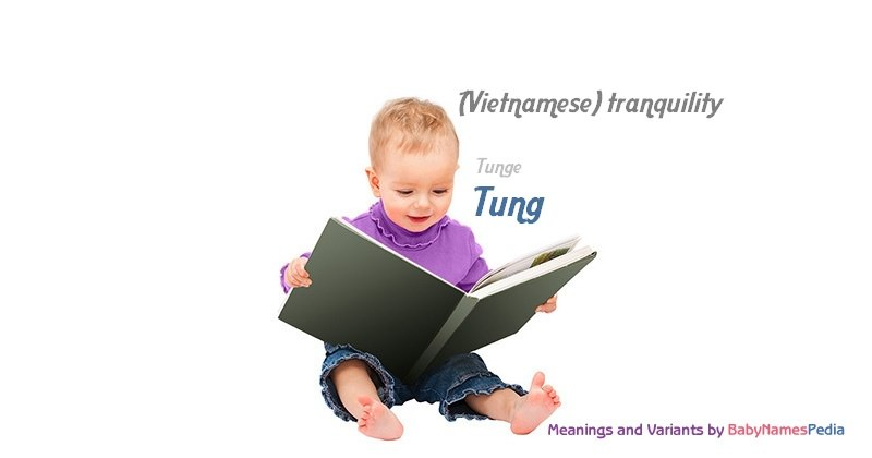 Meaning of the name Tung