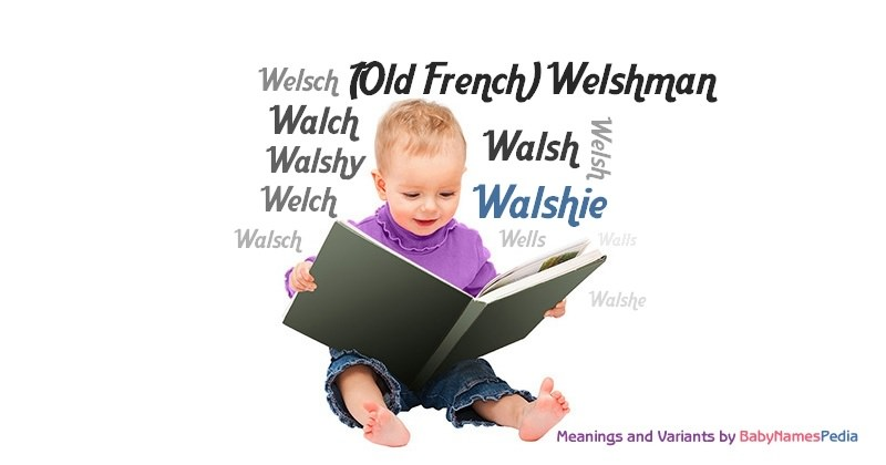 Meaning of the name Walshie
