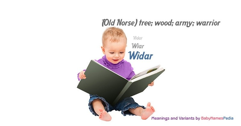 Meaning of the name Widar