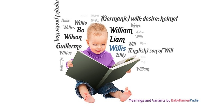 Meaning of the name Willis