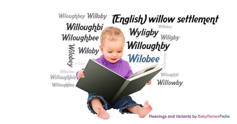 Meaning of the name Wilobee
