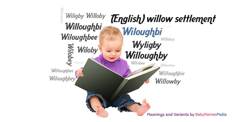 Meaning of the name Wiloughbi
