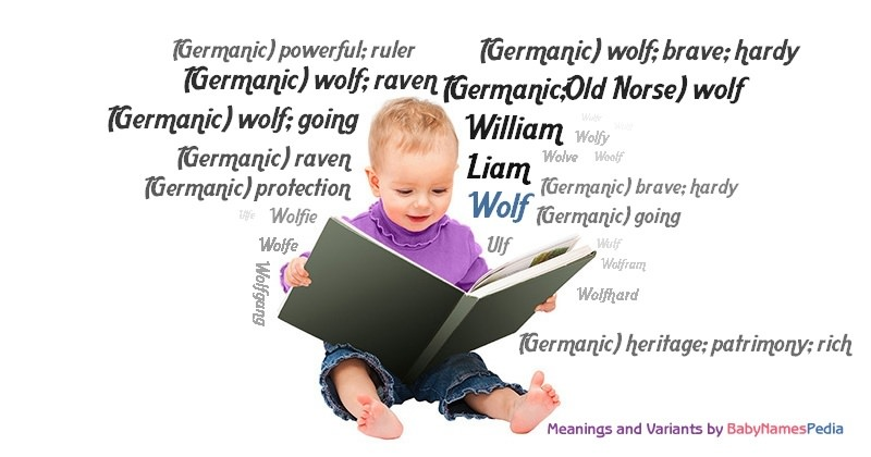 Meaning of the name Wolf
