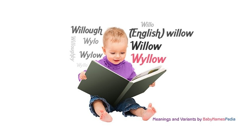Meaning of the name Wyllow