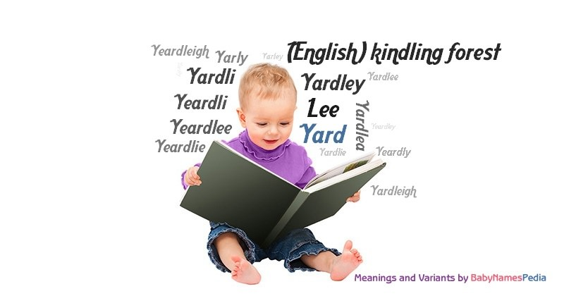 yard meaning of yard what does yard mean
