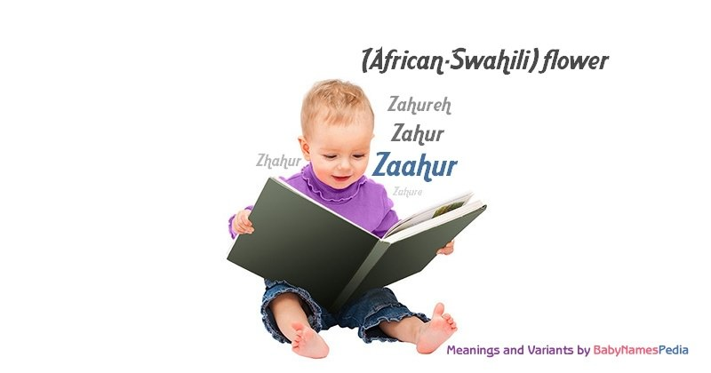 Meaning of the name Zaahur