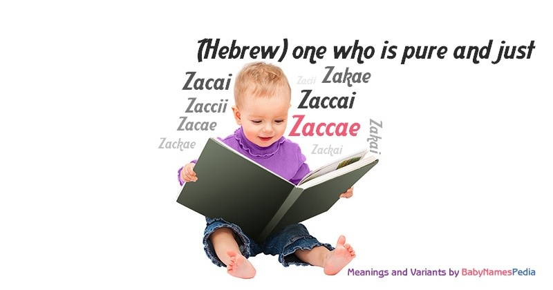 Meaning of the name Zaccae