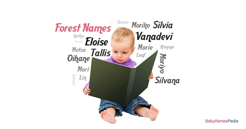 Forest Names